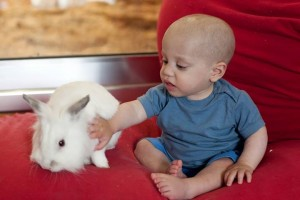 pr oranit baby w bunny