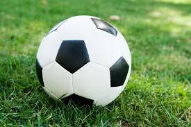 soccer-ball | Delmarva Business Directory Salisbury Business Journal